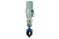 rotary valve btfly